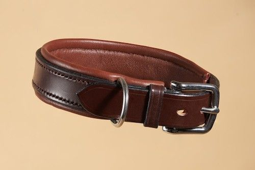 Padded Bridle Leather Dog Collar in Aus Nut and Mid Brown
