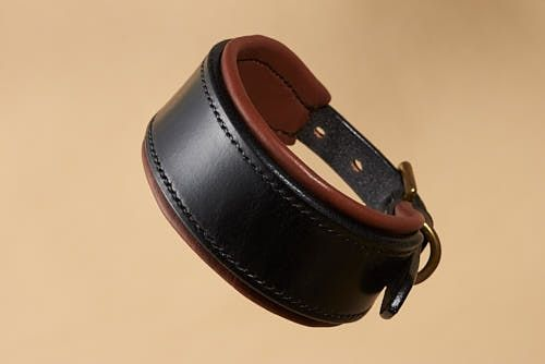Bridle Leather Padded Hound Collar
